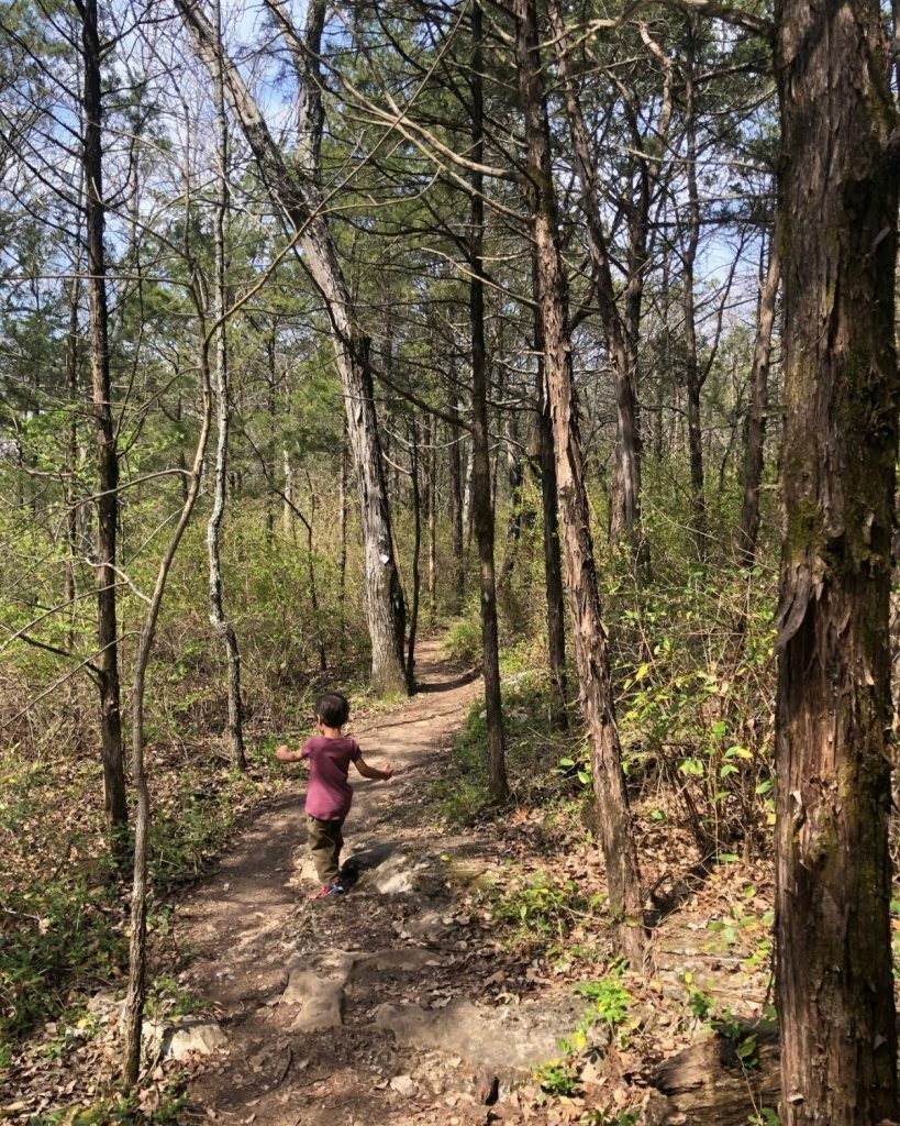 Person hiking in trail at Monte Sano Park.